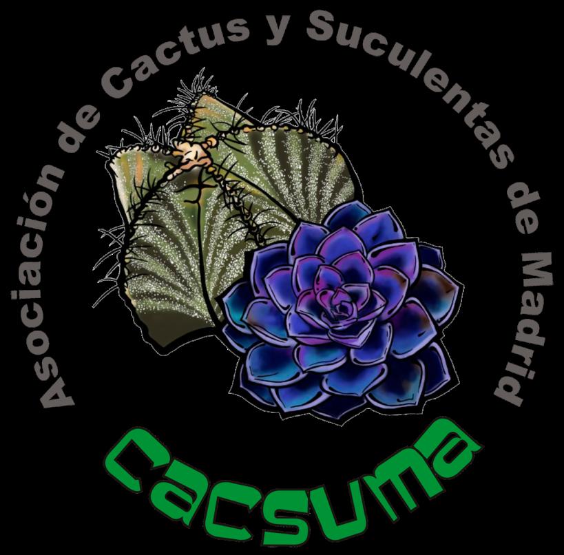 peque_cactus